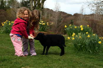 Granddaughters feeding Bramble