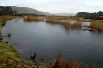 High water in the reed bed,                                       Dervaig